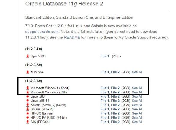 How to Install Oracle database on windows server |